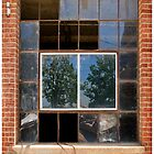 Window - Sacramento, CA by Rob Bannister