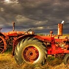 Old Tractors by Michelle Burton