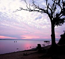 Sunset fishing Eli creek by Jason Dickfos