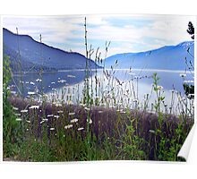 Kootenay Lake Poster