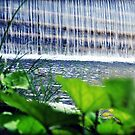 Flowing by MEV Photographs