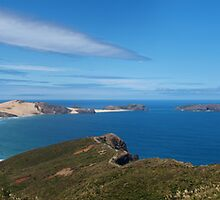 Cape Reinga by Moonbase44