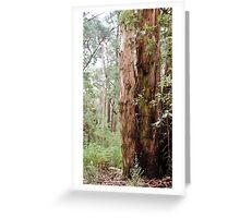 Strong Timber Greeting Card
