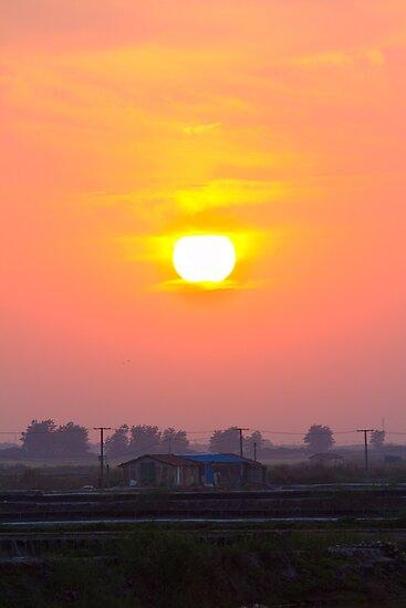 sunset at chong-ming village by houenying
