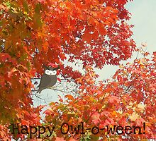 happy owl-o-ween by Daneal O'Leary