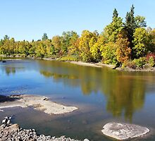 Autumn on the Whitemouth River by Vickie Emms