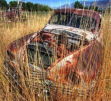 Old car - Packard by zumi