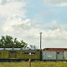 Mail Train In Open Field by Larry3