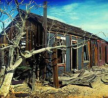 Mojave House I by Liam's Card-O-Rama