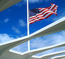 USS Arizona Memorial by Anthony M. Davis