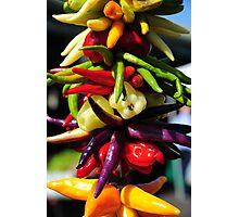 Pepper .. ? Photographic Print