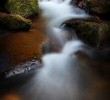Alec Creek II by Tula Top