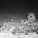 Old John in Infrared by Paul Richards
