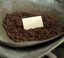 Coffee Beans by Barbara Gerstner