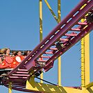 Enjoying a Ride at the CNE by Gerda Grice