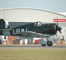 Boomerang Take-off,Williamtown Airshow, 2010 by muz2142