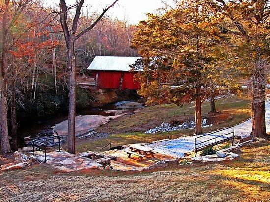 *South Carolina's Only Covered Bridge* by DeeZ (D L Honeycutt)