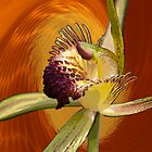 Swamp Orchid with Orange Swirl by Leonie Mac Lean