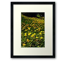 Flowers on the Hill Framed Print