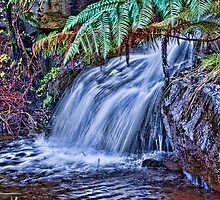 Water Fall  by Steve  Ellis