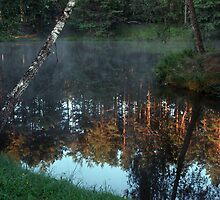 Lake in forest in early morning by Antanas