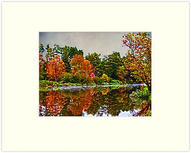 Fall In The Berkshires - New England by Kate Adams