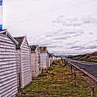 Normans bay huts by Paul Morris