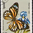 Stamp, butterfly on flower. by FER737NG