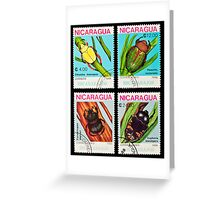Beetles stamps collection. Greeting Card