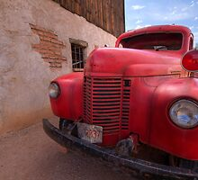 Old Red by Sue  Cullumber