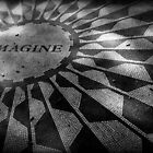 Imagine by Caroline Fournier
