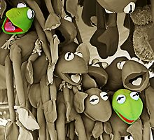 forlorn kermits by Steve Scully