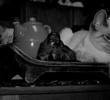 Zen Kittens by coffeenoir