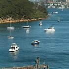 Mosman from Taronga Zoo by Kezzarama
