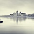 Hungarian Parliament Building by fineartphoto1