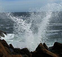 V Wave Splash by Doug Gruber