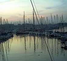 """""""Sailboats - Rotterdam, Netherlands"""" by Michelle Lee Willsmore"""