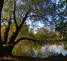 Down by the Riverside ! by Elfriede Fulda