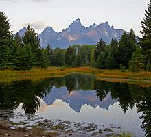 Teton Sunrise by Harry Oldmeadow