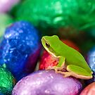 I wanna be a Freddo when I grow up! by clearviewstock
