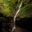 Watkins Glen Falls by Joseph T. Meirose IV