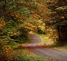 Follow The Road by Charles & Patricia   Harkins ~ Picture Oregon
