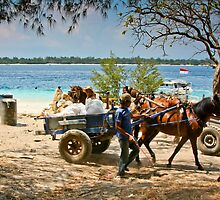 Cidomo horse carts of the Gili Islands 4 by Normf