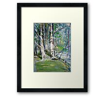 Another View. Another Walk. Framed Print