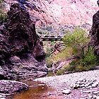 Fish Creek, Arizona by J. Michael Runyon
