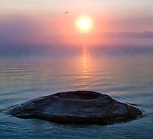 The Fishing Cone, Yellowstone Lake, Wyoming by Kenneth Keifer
