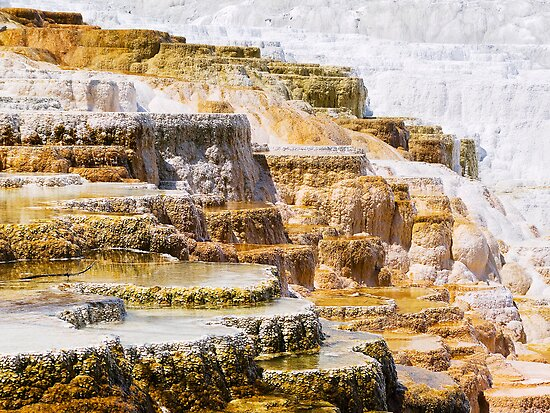 Mammoth Terraces, Yellowstone National Park by Kenneth Keifer