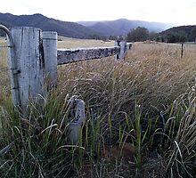 Beyond the Fence by janewiebenga
