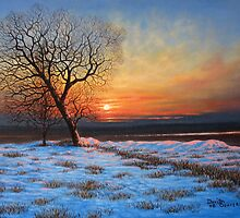 CAVAN SNOW 1  by David Seavers