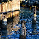 forgotten pier by William Carney